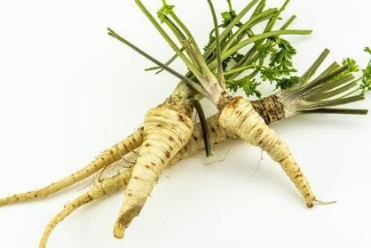Parsley Roots